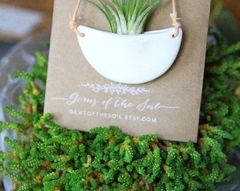 Half Moon Living Plant Necklace // Plant Vessel Pendant // Natural Materials // Handmade