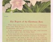 "Christmas Rose Legend Vintage Linen Postcard  ""When Jesus was born in the little town of Bethlehem..."" Floral Ephemera Flower Legend"