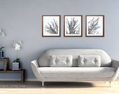 Modern Spring Tree Branches Art Prints - Set of Tree - Charcoal Grey Woodland Home Decor - Multi Panel Tree Triptych Wall Art