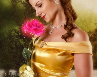 Belle Version I Adult Costume Dress Gown Beauty and the Beast