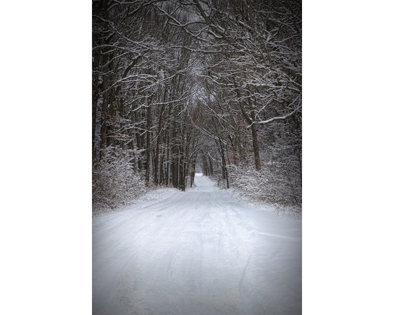 Country Road after a fresh snowfall in the Yankee Springs Recreation Area in Michigan - A Fine Art Winter Landscape Photograph