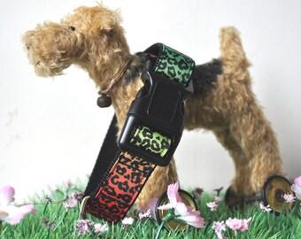 Dog Collar - Chameleon -  50% Profits to Dog Rescue