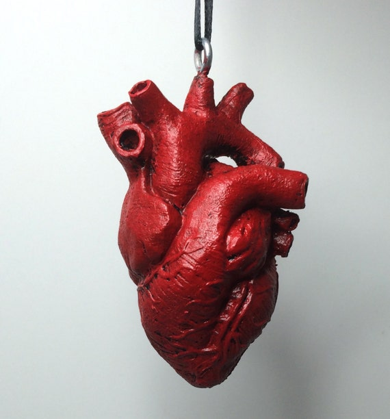 anatomical human heart ornament, Human Body