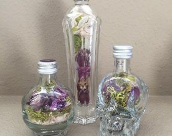 Little Terrarium: Skull, Slender or Round