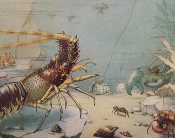 Vintage 1930s Sealife Bookplate Print Illustration Ocean Life CEPHALOPOD Squid Crustacean Lobster Shrimp Aquatic Home Decor