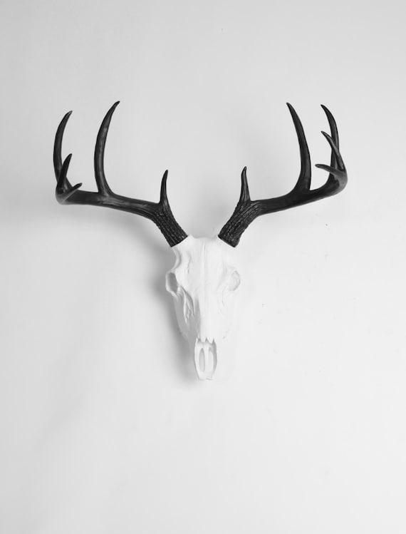 Faux Bois De Cerf : Black and White Deer Skull Antlers