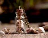 Beach Necklace - Tiny Shells - Handmade Necklace - Bronze or Silver - Shell Vial - Vial Pendant