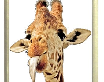 Cheeky Giraffe Fridge Magnet 7cm by 4.5cm,