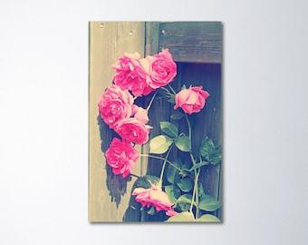 Shabby Chic Art, Vertical Art, Oversized Art, Large Wall Art, Pink Roses, Romantic Art, Extra Large Wall Art, Pink Art, Fine Art Photogaphy