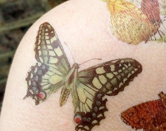 Butterfly Vintage Book Illustration Temporary Tattoo