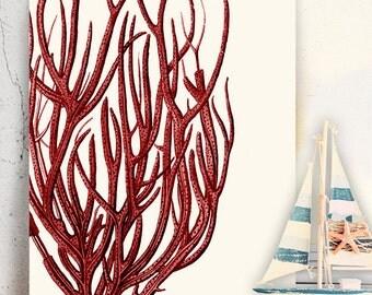Red Coral 5, Coral Print - Nautical print coral beach decor sea coral décor coral illustration coral art red room decor red art print beach
