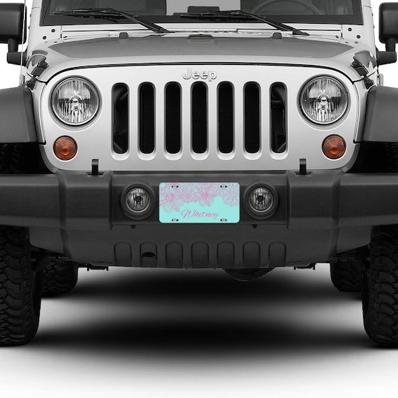 Custom Personalized License Plate Car Tag Pink & Light Blue