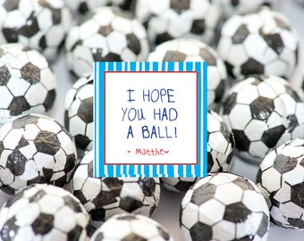 Sports Theme Birthday Party Favor Tags- Sports Theme Favor Tags- I Hope you Had a Ball Favor Tags