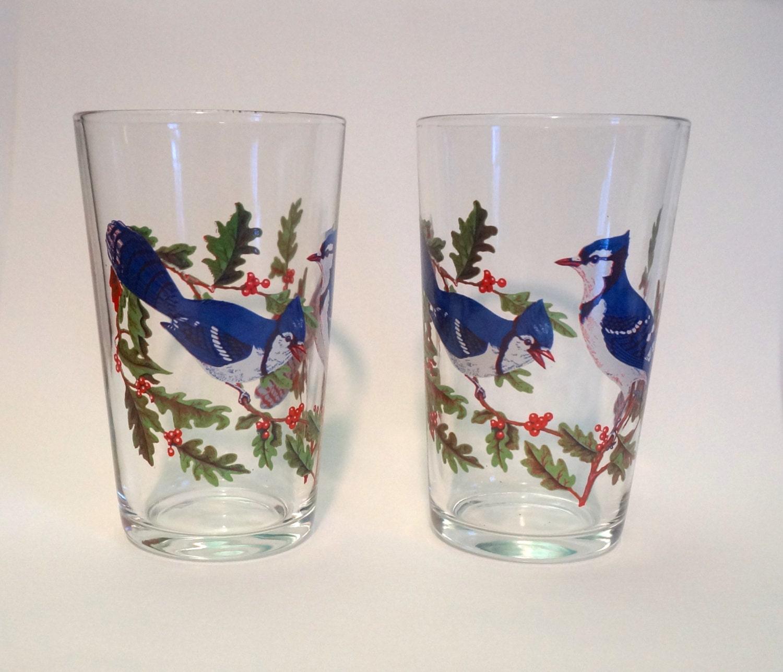 Vintage Parrot Drinking Glasses - Ass - Video Xxx-6473