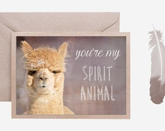 Alpaca Valentine, You're my Spirit Animal, 5x7, Blank Notecard