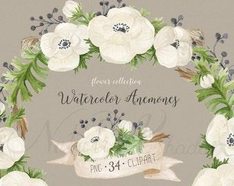 Watercolor Anemones. Hand painted Watercolor Flowers set. Floral elements. Digital Clipart