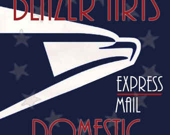 Shipping Upgrade to USPS Express Mail on Your Order from Blazer Arts