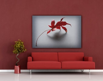 Red Leaf Photography, Modern Still Life Autumn Photograph, Horizontal Wall Art, Minimalist Home Decor, Fine Art Nature Photo Prints