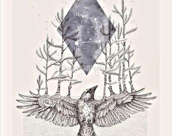 Corvus - 8x10 geometric raven art print