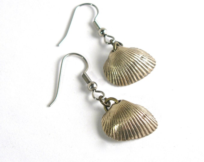 Rhode Island Polished Brass Lost Wax Cast Transverse Ark Shell Women's Earrings on Either Sterling Silver or Stainless Steel Ear Wires