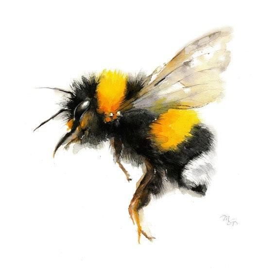 Bee Watercolor Painting Bumble Art Print Nature