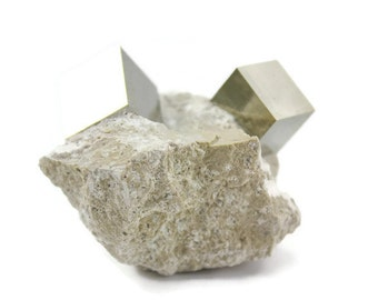 Raw pyrite cubes - Fools gold - Pyrite cubes in matrix from Spain