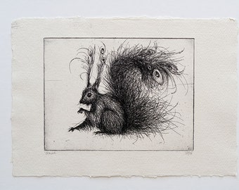 squirrel - original handpulled etching - black and white - fluffy animal - illustration
