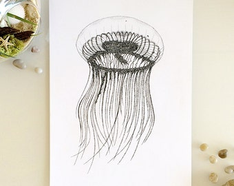Jellyfish Print - A5, A4 or A3 line drawing. Art Print by Tegan Swyny