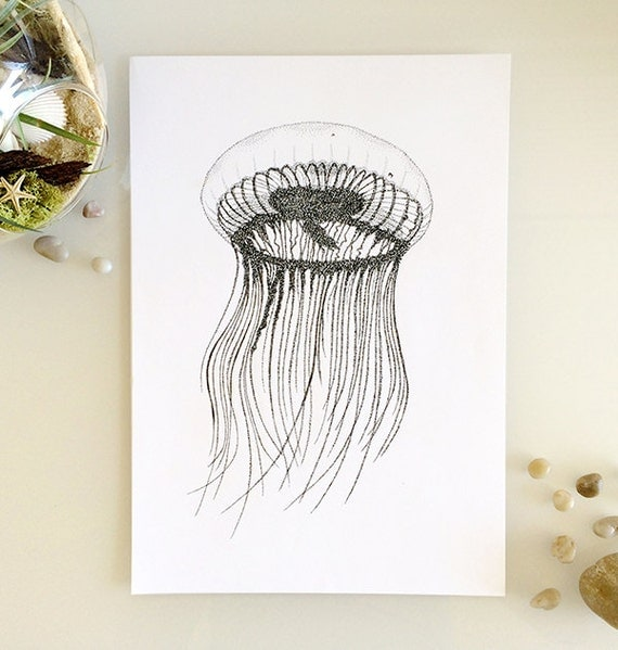 Line Drawing Etsy : Items similar to jellyfish print a or line