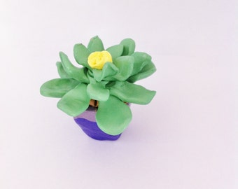 Miniature Succulent Sculpture - Clay Potted Succulent//Cactus lover//Cacti gift//Mothers Day Gift//Forever Plant