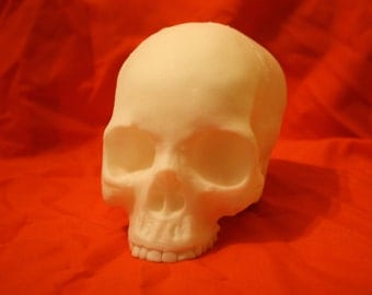 Soft human skull replica, unpainted(raw foam).  Whole, or two sides.