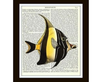 angelfish art print upcycled book page art illustration colorful fish art ready - Colorful Fish Book