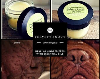 Velvety Snout/Crusty dog nose, elbow, or pads/Healthy dog nose