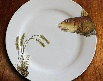 "fishy fish Dinner Plate - ""curieux"""