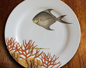"fishy fish Dinner Plate -""OK corail"""