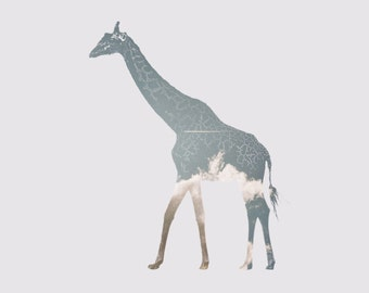 Giraffe with Airplane Printable Art, Giraffe print,      Giraffe pictures, Pictures of giraffes, Giraffe art, Funny giraffe