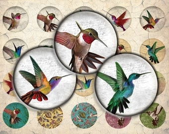 Hummingbirds Digital Download - 30mm, 25mm (1 inch) & 20mm circles - Digital Collage Sheet for Glass Dome Pendants, Scrapbooking, crafts