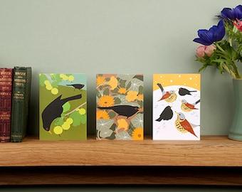 Set of 3 Blackbird Greetings Cards #birds