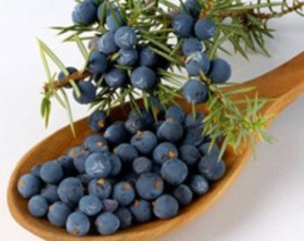 Juniper Berries (Organic)