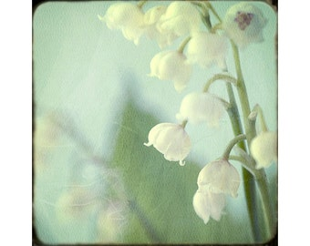 Lily of the Valley Photograph, Soft Focus Flower Print, Floral Art Print, Shabby Chic. Nursery Decor, Bedroom Decor