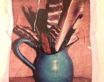 Polaroid emulsion lift - Feathers