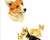 CORGI  DOGs on Two Poses. TOTAL Twelve 6 inch Fabric Squares for Quilting and Sewing