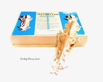Vintage Crucifix Fish Bone, Shell Figurine, Religious Collectible