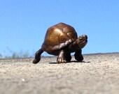 Tiny bronze box turtle sculpture