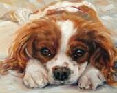 "Spaniel R&R, Cavalier King Charles, custom oil painting by puci, 8x10"""