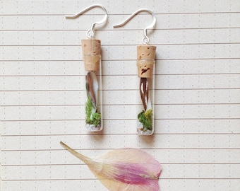 Terrarium Earrings - Moss, Butterfly Wing, Mammal tooth