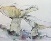 Mushroom Couple - Original Artwork