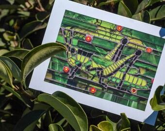 Blank Greeting Card - Glass-hopper mosaic