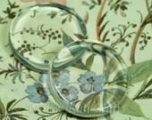 50 Pack 25mm Flat Glass Circles 25 mm (09-07-570)