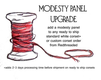 Modesty Panel Upgrade
